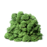 Reindeer moss dark green