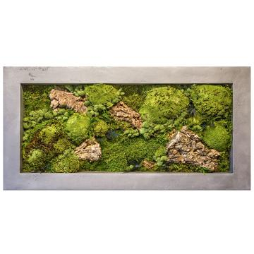 Moss Frame Betonepox MossArt Light Grey 1